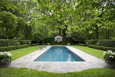 Formal shaped hedge garden with narrow pool, bluestone patio, white flowers.