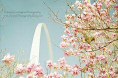 Fine Art Photography 8x10, 16x20, or 20x24 inch, Saint Louis Arch, Missouri Photography, Spring Photography