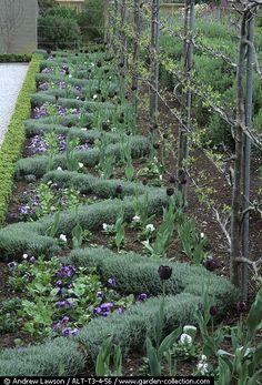 Zigzag | Garden Design