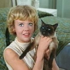 Hayley Mills and that Darn Cat.