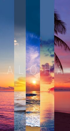 Imagen de Aloha, summer, and beach