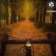 presents: SPECIAL MENTION AUTUMN   @morgan.enthai  FROM   @ig_ivrea ADMN   @cecilianmd F E A U T U R E D  T A G   #ig_ivrea #ivrea #canavese M A I L   igworldclub@gmail.com S O C I A L   Facebook  Twitter L O C A L  S O C I A L   Ig Piemont Crew M E M B E R S   @igworldclub_officialaccount C O U N T R Y  R E Q U I R E D   If you want to join us and open an igworldclub account of your country or city please write us or go to www.igworldclub.it F O L L O W S  U S   @igworldclub @ig_Piemonte…