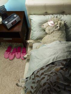 Warm & Cozy...lol cute