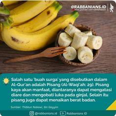 pisang batu obat diabetes permanente