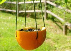 Пиалы из апельсинов