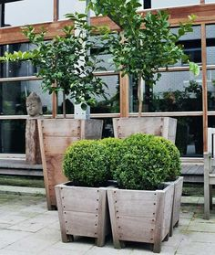 Out Standing Planters - Marot + Ort No. 2