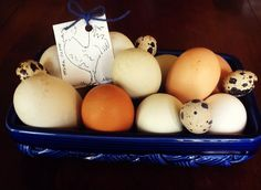 Duck, quail and chicken eggs from a spring trip to the farmer's market. Aren't they neat?