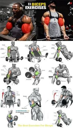 My Biceps & Triceps Workout Routine for Bigger Arms Size Best Exercise For Biceps, Big Biceps Workout, Best Chest Workout, Gym Workout Tips, Weight Training Workouts, Chest Workouts, Fitness Workouts, Workout Challenge, Workout Plans