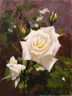 """""""White Rose"""" by Patrick Saunders (oil on canvas, 9""""x12"""")"""