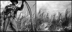 Stopover collage1.jpg (670×300)
