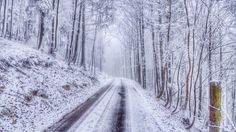 wintertime wallpaper free 5000x2812