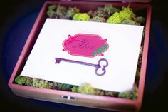 moss in a pink box.  just pretty.