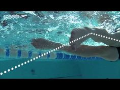 Speedo's Ultimate Guide to a Perfect Freestyle Swim Stroke! (Tutorial) - Presented by ProTriathlon - YouTube