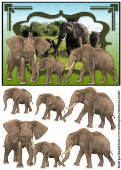 Africa Elephants on Craftsuprint designed by Aisne Smith - An A5 card front featuring elephants with decoupage pieces to enhance the overall card. - Now available for download!