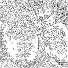 johanna basford free coloring pages - Bing images
