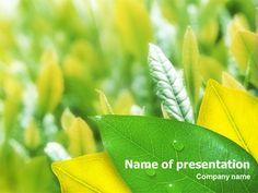 http://www.pptstar.com/powerpoint/template/indian-summer/Indian Summer Presentation Template