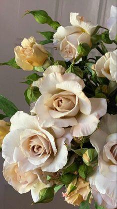 Beautiful Flower Arrnagements | Wholesale Flowers