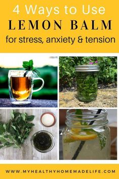 How to Use Lemon Balm for Stress Tension and Anxiety Herbal Remedies Home Remedies Herbal Tea Recipes How to Make a Lemon Balm Tincture How to Make a Lemon Balm Glyc. Lemon Balm Recipes, Lemon Balm Uses, Tea Recipes, Lemon Balm Tea Benefits, Lemon Uses, Cold Home Remedies, Natural Home Remedies, Herbal Tinctures, Herbalism