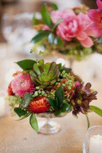 flowers & succulents