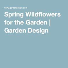 Spring Wildflowers for the Garden | Garden Design