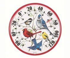 Red Songbird Collage Thermometer - American Expedition