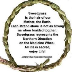 Sweet grass is the hair of our mother, the Earth. Each strand alone is not as strong as when braided together. Sweet grass represents the Northern Direction on the Medicine Wheel. All life is sacred. Native American Spirituality, Native American Wisdom, Native American History, American Indians, American Symbols, American Life, Smudging Prayer, Medicine Wheel, Nativity Crafts