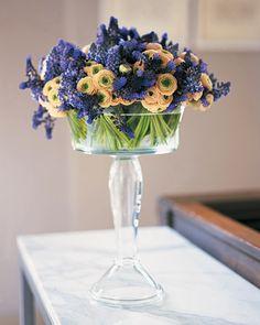 Ranunculus and muscari (grape hyacinth)
