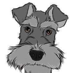 'Adorable Miniature Schnauzer' by rmcbuckeye Schnauzer Puppy, Miniature Schnauzer, Schnauzers, Super Mario Coloring Pages, Animal Templates, Dog Silhouette, Dog Illustration, Cute Animal Drawings, Sketch Painting