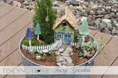 Mini garden with house & picket fence.  Joann's carries the fencing, but now I have to hunt for the little house!