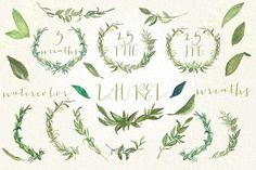 Laurel foliage wreaths. Watercolor. by LABFcreations on @creativemarket