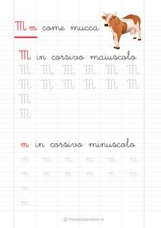 Schede di Pregrafismo delle Lettere dell'Alfabeto da Stampare | PianetaBambini.it Script, Alphabet, Education, Words, Veronica, Montessori, Venus, Aurora, Calligraphy