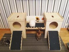 House.  Bunny, rabbit, hutch