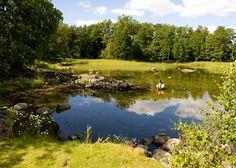 Isosaari Golfin hienoin väylä on seitsemäs. Tiiauspaikalta on veden yli matkaa griinille hieman yli 100 metriä. (Kuva Pasi Kokko)