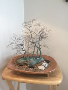 This is the chance to experience trees in a new way. Winter is the best time of the year to see the actual branches and trunk of the tree - without the leafy covering Peace Art, Miniature Trees, One Tree, Wabi Sabi, Recycled Materials, Copper Wire, Bonsai, Sculpture Art, Decorative Bowls