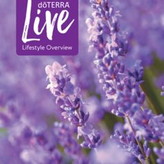 Live cleaner and empower yourself to live your best life. Learn about how you can use doTERRA products to support you. Wellness Plan, Personal Wellness, Health And Wellness, Loyalty Rewards Program, Doterra Essential Oils, Melaleuca, Health Goals, Natural Solutions, Alternative Medicine
