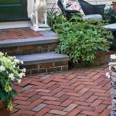 Herringbone Brick Floor This zigzagging design helps lock bricks in place and is more dynamic than the typical running bond. Make the pattern with any rectangular brick or paver. Similar to shown: Red Charcoal Holland pavers, about 60 cents each; Brick Path, Brick Pavers, Brick Flooring, Brick Steps, Outdoor Rooms, Outdoor Gardens, Outdoor Living, Outdoor Decor, Slate Patio