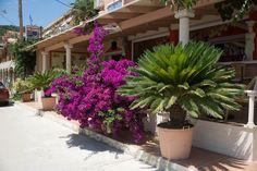 #Greece #Kefalonia #Katelios #summer #sobeautiful