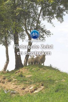 Fietsroute Zeist en omstreken #Utrecht #Natuur #Cultuur #Nederlandselftal #Sport #Fietsen Biking, Netherlands, Maps, Chill, Travel, The Netherlands, Countries, Bike Trails, The Nederlands
