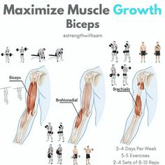 Maximize Bicep GrowthTraining each muscle associated with the Biceps is key to growing that area optimally. Check out these tips to hit every muscle group in the Biceps effectively__Biceps: This is the muscle most people think of when they hear the term Biceps. Exercises that target this muscle specifically include chin-ups, which are a great compound movement that hit the back and biceps effectively, barbell curls, and concentration curls