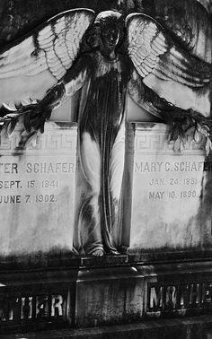 Bonaventure Cemetery Savannah Georgia That is the coolest lighting! Cemetery Angels, Cemetery Statues, Cemetery Headstones, Old Cemeteries, Cemetery Art, Graveyards, Savannah Georgia, Savannah Chat, Moody Person