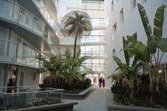 Craftelement   Infographie pour créateurs d'espaces  Tropiques à Rennes Plants, Urban Planning, Infographic, Spaces, Rennes, Landscape, Plant, Planets