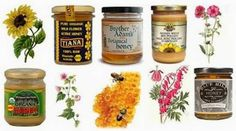 Honey Good for Dogs, Cats - Honey is a Natural, Healthful, Healing Food In this article… 1.   Introduction 2.   History of Honey - As a Food and Medicine 3.   Health Promoting Properties of Honey 4.   Health Benefits of Honey  5.   Defining, Understanding Different Types of Honey 6.   How to Select a Quality Honey  7.   How to Store Honey - Retaining Quality 8.   How to Add Honey to Your Dog's, Cat's Diet 9.   Daily Dietary Dosage for Honey 10. Cautions and Interactions
