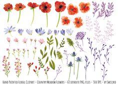 Watercolor Meadow Flowers by swiejko on Creative Market