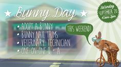 Bunny Day Event! Coming to Keystone Pet Place this Saturday 8-] → OHHH YEAHH!!! ←