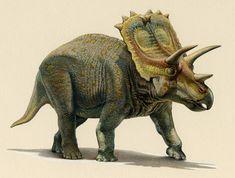 Resultado de imagen para anchiceratops