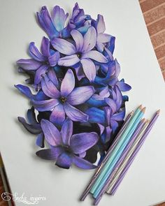 Ideas for beautiful art drawings sketches inspiration colored pencils Colored Pencil Artwork, Color Pencil Art, Colored Pencils, Color Pencil Drawings, Colorful Drawings, Art Drawings Sketches, Flower Sketches, Horse Drawings, Arte Lowrider