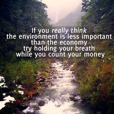 If you really think the environment is less important than the economy, try holding your breath while you count your money.