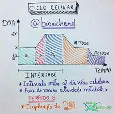 #Biologia