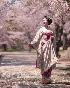 The sakura flowers is so beautiful with maiko in it ~