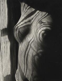 Photographies de Jacques-Henri Lartigue et Gisèle Freund | Photographie.com